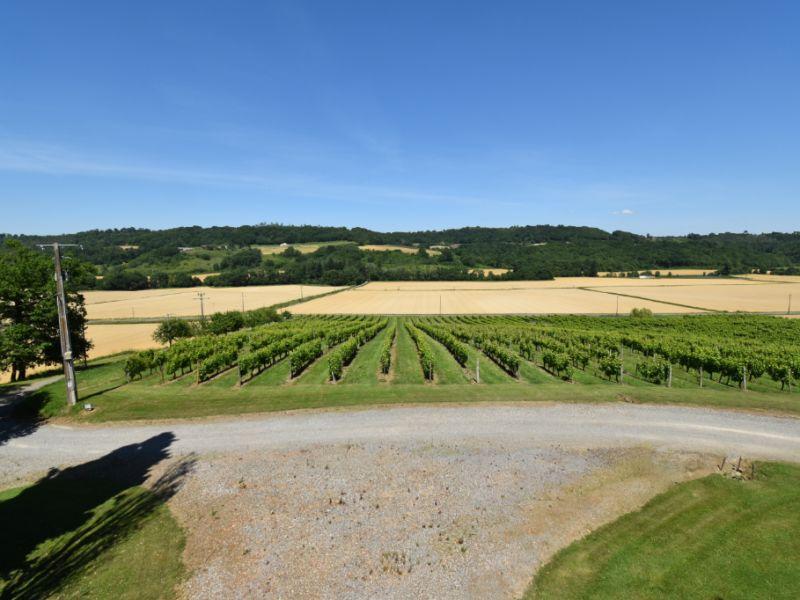 Domaine viticole au c?ur de nos terres béarnaises!