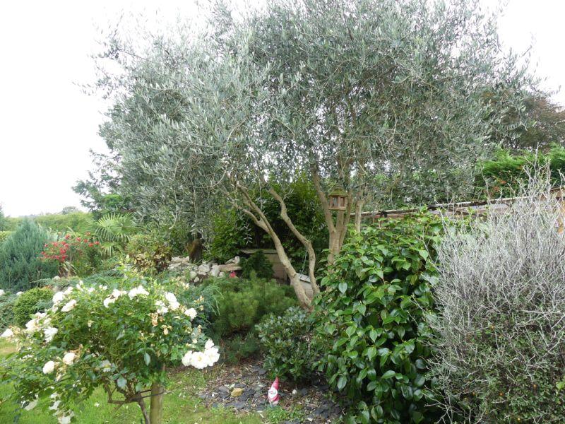 Sale house / villa Ploneour lanvern 330750€ - Picture 16