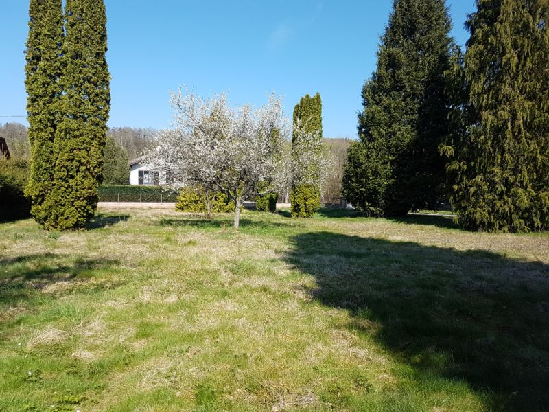 Sale site Ban de laveline 38 900€ - Picture 1
