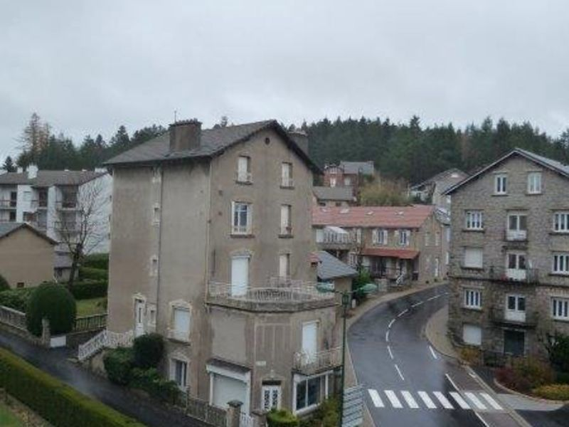 Sale apartment Le chambon sur lignon 40000€ - Picture 4