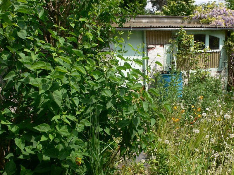 Sale house / villa Lille 158000€ - Picture 2