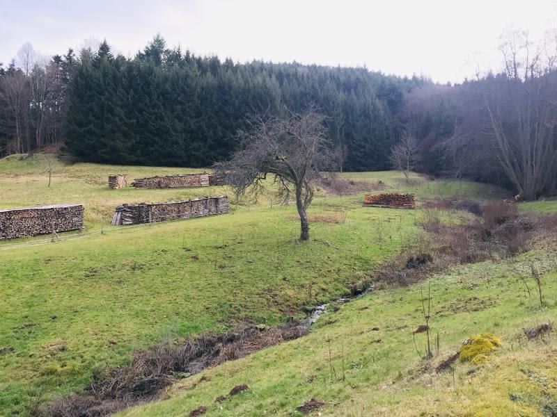 Verkauf grundstück Eschbach au val 143000€ - Fotografie 2