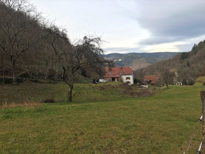 Verkauf grundstück Eschbach au val 143000€ - Fotografie 3