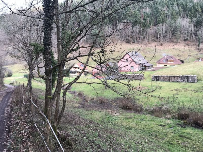 Verkauf grundstück Eschbach au val 143000€ - Fotografie 4