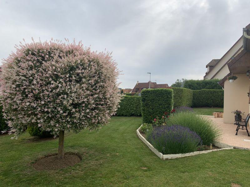 Verkoop  huis Blonville-sur-mer 315000€ - Foto 20