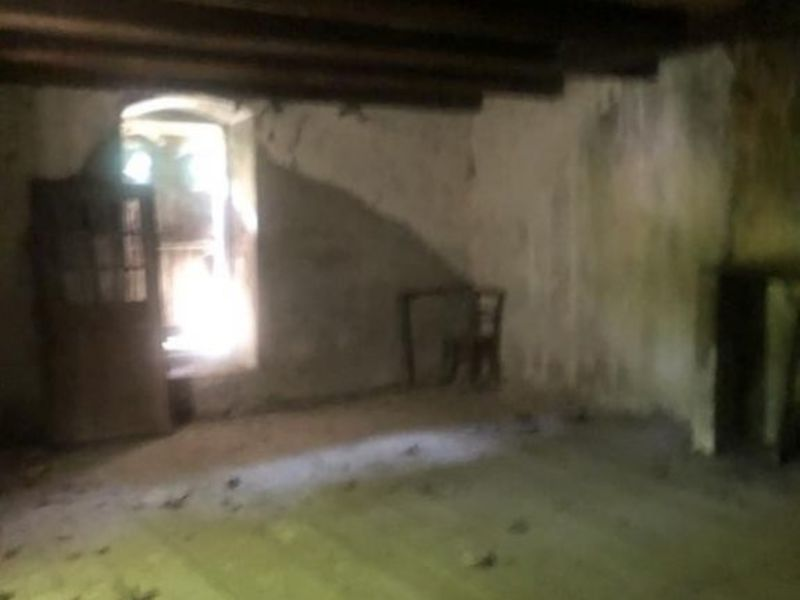 Vente maison / villa Cornod 66 000€ - Photo 5
