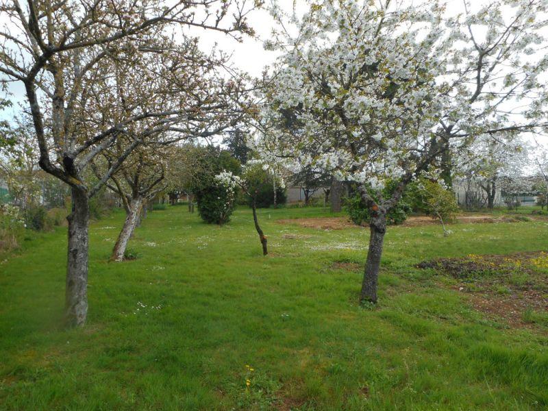 Verkauf grundstück Ste gemme la plaine 35000€ - Fotografie 3
