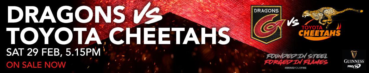 vs Cheetahs