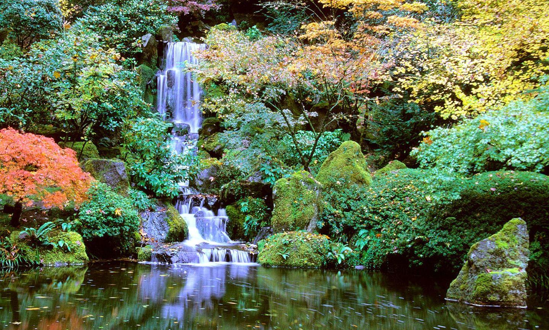 Portland Japanese Garden The Official Guide To Portland