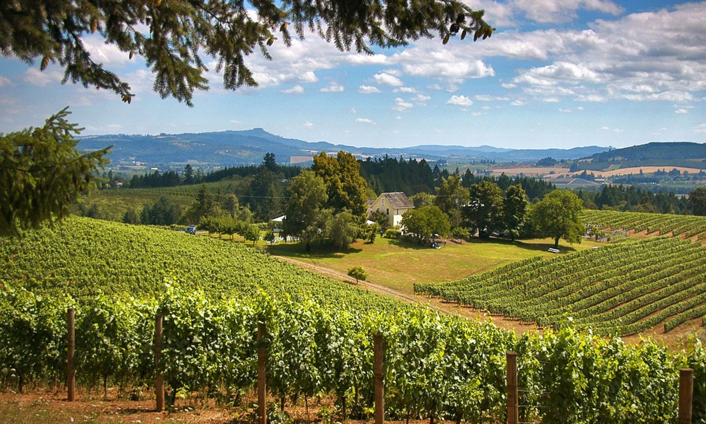 Progressive Near Me >> Willamette Valley | The Official Guide to Portland