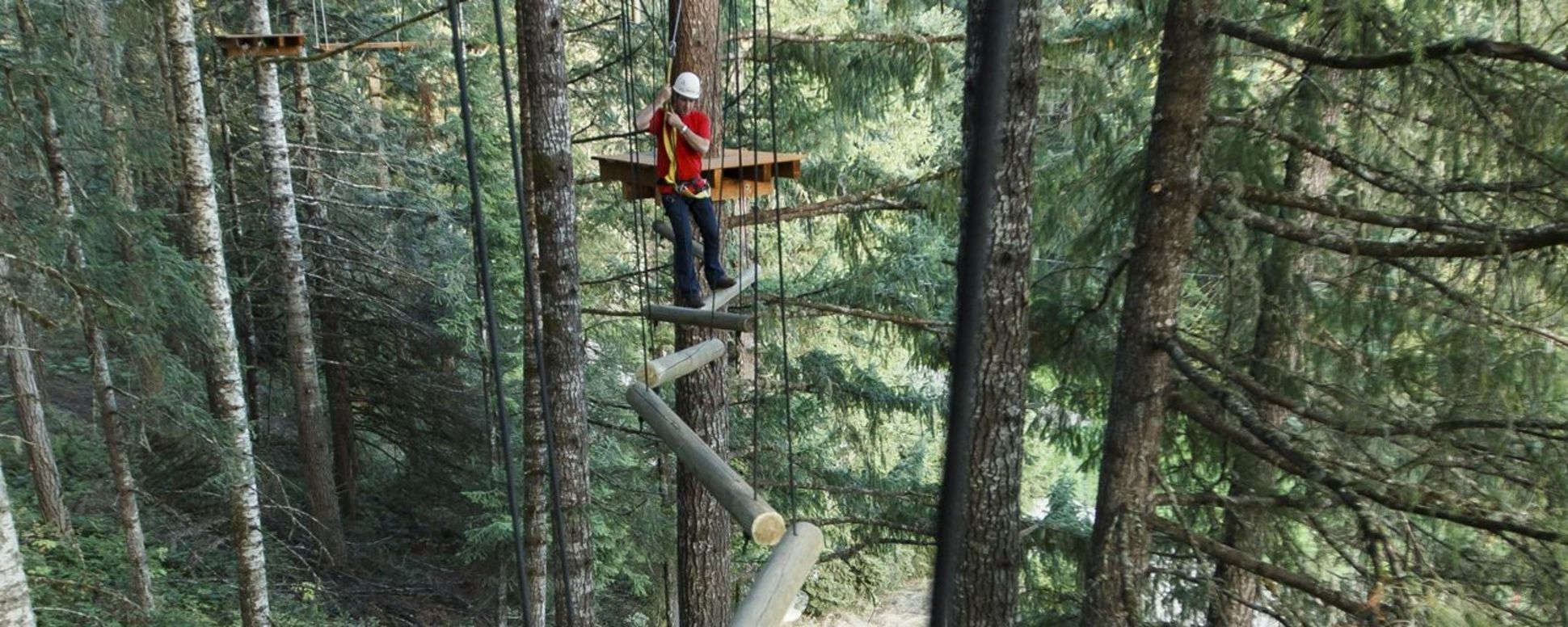 A helmeted person navigates a path of logs suspended from cables high above the forest floor at Tree to Tree Adventure Park.