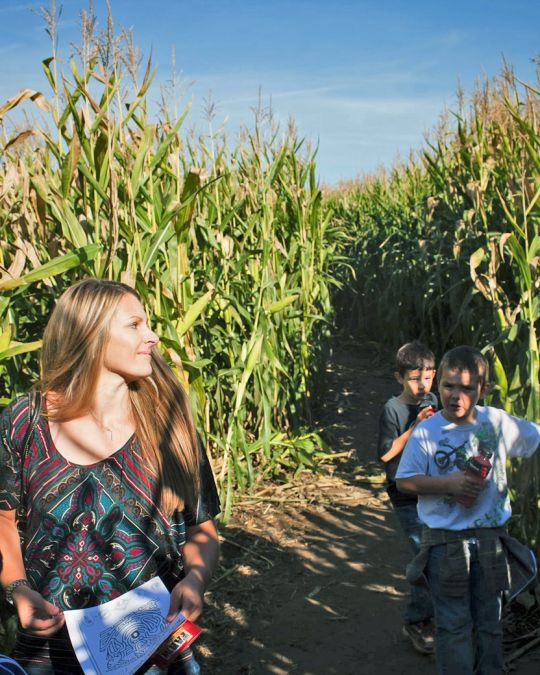 The Corn Maize at The Pumpkin Patch on Sauvie Island