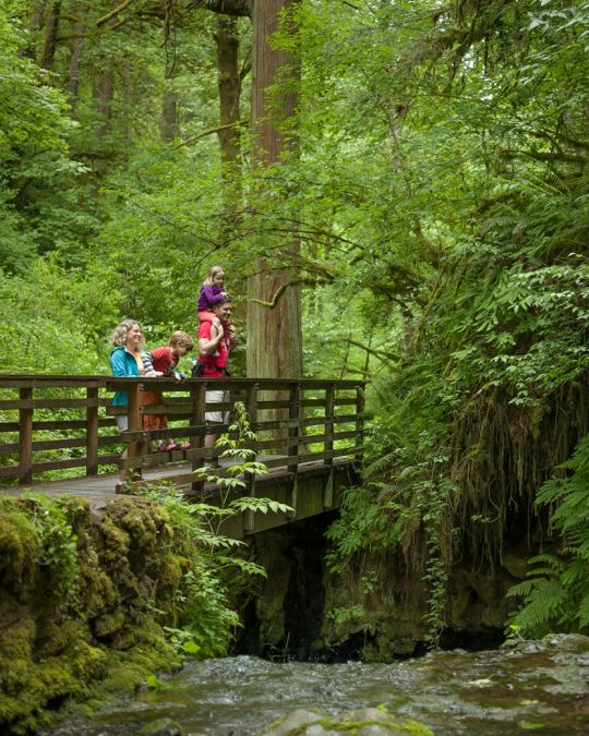 Forest Park has 70 miles of trails for hikers to enjoy.