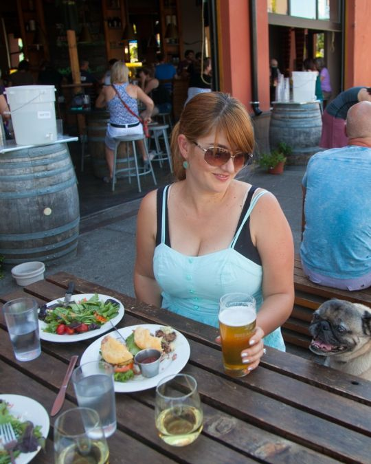 Breakside Brewery welcomes four-legged friends on its sunny patio.