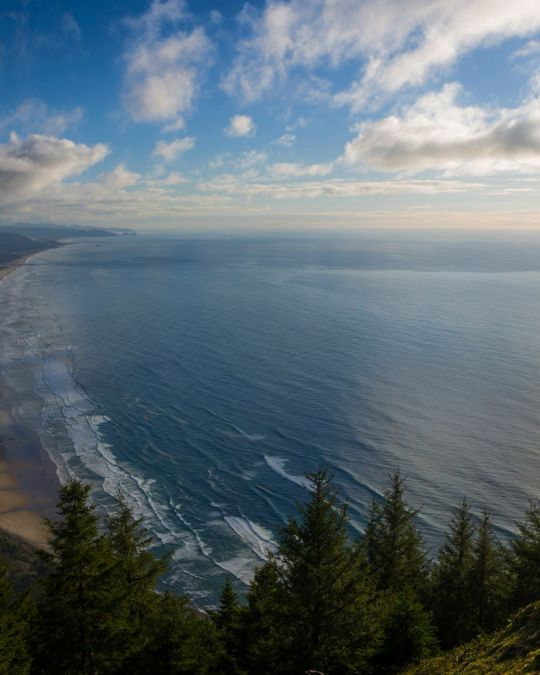 Watch for whales from Neahkahnie Mountain on the Oregon Coast.