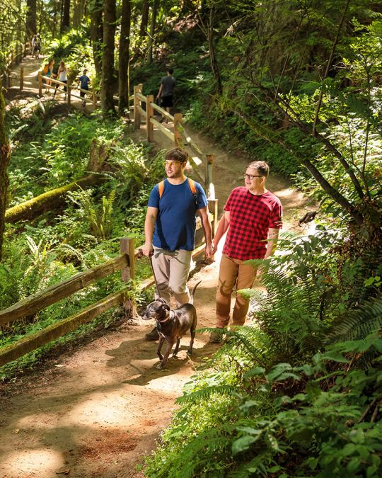 Portland\'s pet parents love hitting the trail in Forest Park.
