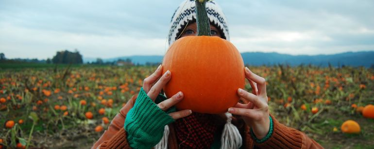 Pick your very own perfect pumpkin on Portland\'s Sauvie Island.