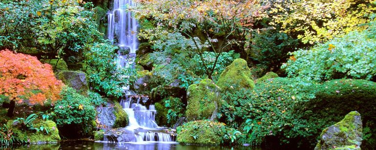 The Portland Japanese Garden offers over 5 acres of tranquility and a tea house.