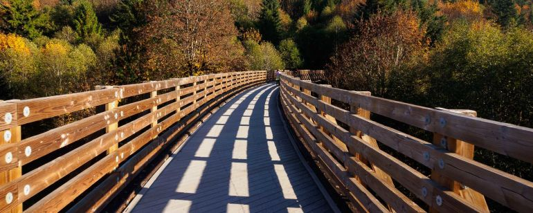 Enjoy an autumnal walk along the Banks-Vernonia Trail.