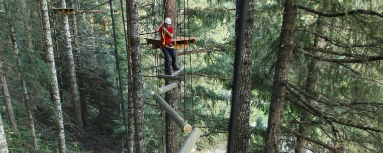 West of Portland, Tree to Tree Adventure Park offers an aerial obstacle course and zip line.