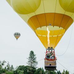 Festival of Balloons