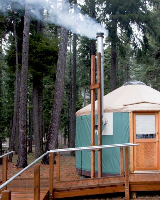 a yurt in a wooded environment