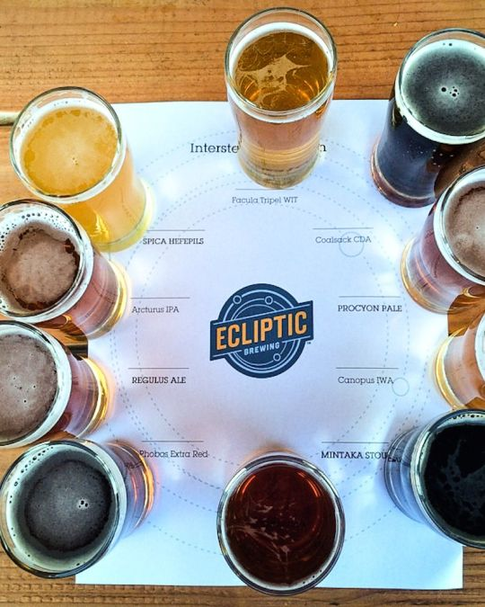 an overhead view of ten small glasses of draft beer on a wooden table