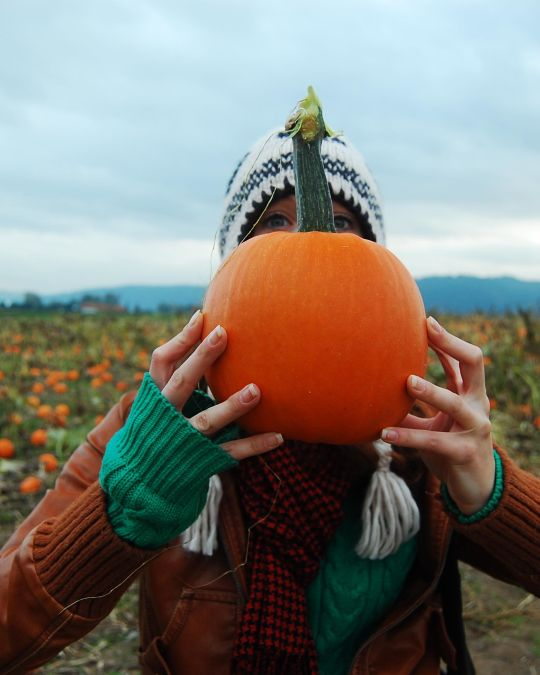 a person standing in front of a pumpkin patch holding a pumpkin in front of their face