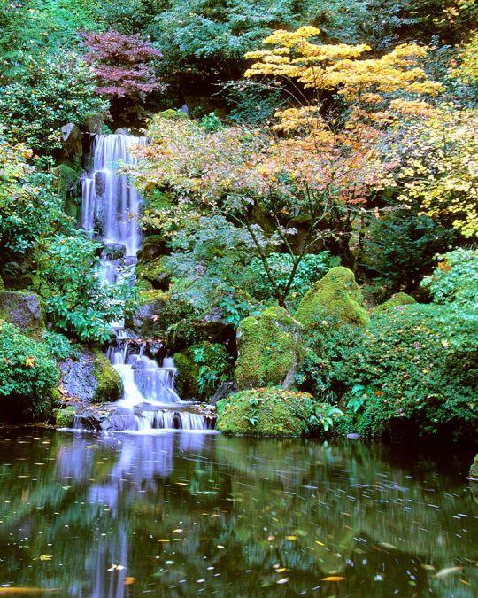 waterfall in Portland\'s Japanese Garden