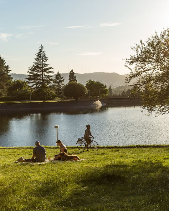 a biker and two picnicking people in front of a tree lined reservoir