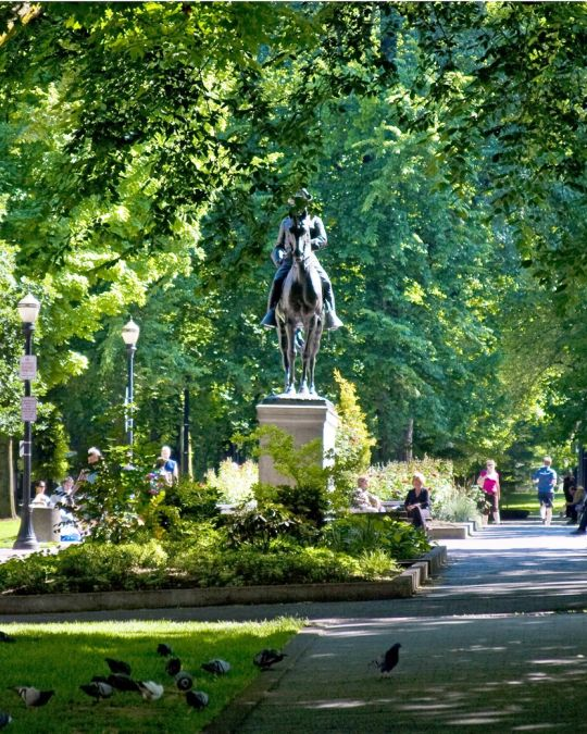 statue depicting Theodore Roosevelt on his horse in Portland\'s South Park Blocks