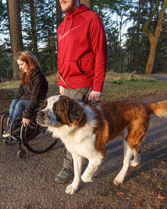 a girl in a wheelchair on nature trail with a man and a dog