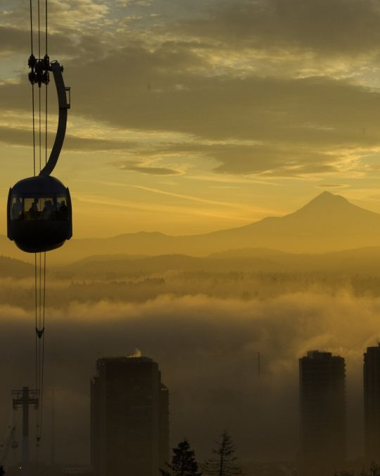 Portland Aerial Tram with Mt. Hood is visible in background horizon
