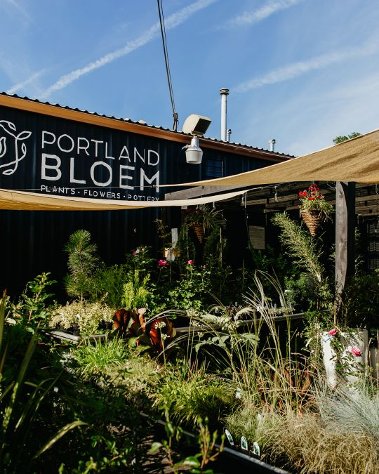 Portland Bloem in Northeast Portland's Cully neighborhood sells plants, flowers and pottery and offers regular workshops. 