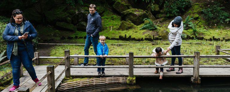 Family admires coi pond at Portland Japanese Garden