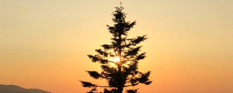 Sunrise at Soda Mountain