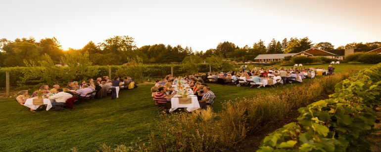 dozens of diners sitting at long tables enjoy an outdoor meal