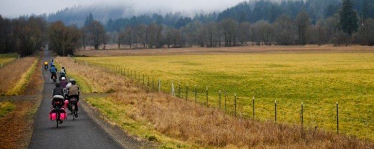 Cyclists riding towards trees beside a field on the Banks-Vernonia State Trail
