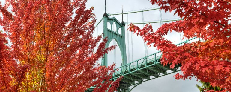 Maple trees with red leaves frame a light green bridge