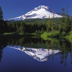 Wildwood Tours Full Day Gorge Waterfalls and Mt. Hood Tour