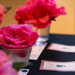 Newberg Camellia Festival