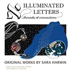 Winter Lights Festival: Illuminated Letters