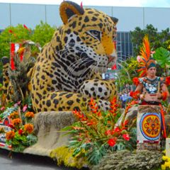 Grand Floral Float Showcase