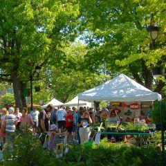 Camas Plant and Garden Fair