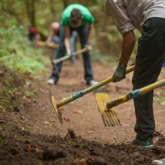 Earth Day with Forest Park Conservancy