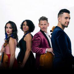 Catalyst Quartet: Uncovered