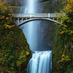 Wildwood Adventures Half Day Gorge Waterfalls Tour