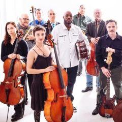 Portland Cello Project: Purple Reign
