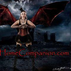 Scary Home Companion February Show