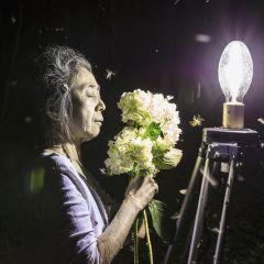 Eiko Otake: A Body in Places
